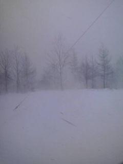 今日は冬本番の天気