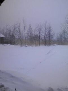 雪が消えた!