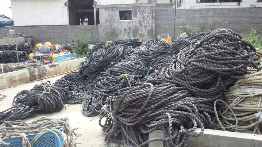 わかめ養殖漁業支援